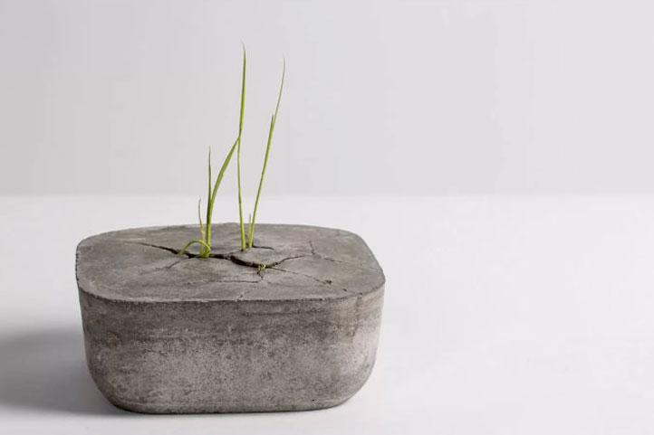 Cement Plus Sustainability